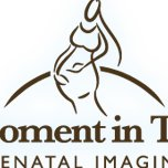 A Moment In Time Prenatal Imaging
