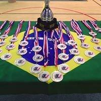 Cicap - Championnat Intervilles de Capoeira