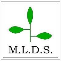 Michigan Landscape Design Services