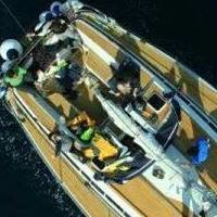 Mare Charter