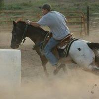Tilley's Quarter Horses