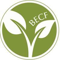 Blue Earth Community Foundation