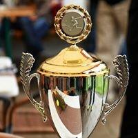 Ferrosa-Stahl-Cup