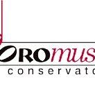 ProMusic Conservatory