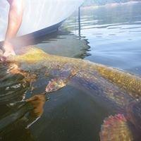Guide de  pêche  lac de Naussac, Charpal, Villefort