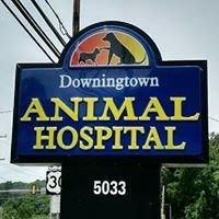 Downingtown Animal Hospital PC