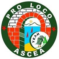 Pro Loco Ascea