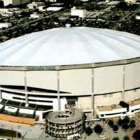 Tampa Rays Tropicana Field