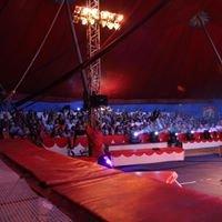 Ecole de cirque Valérie Fratellini