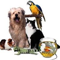 Healing Creatures Animal Hospital