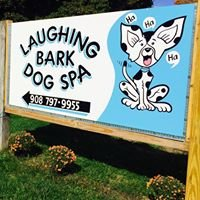 Laughing Bark Dog Spa
