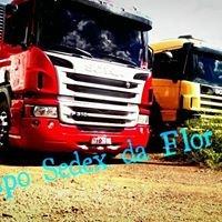 Sedex_da_flor