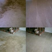 Proven CarpetCleaning