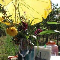 Weinbau Maria Grötzer