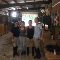 Sunnyfield Equestrian Farm