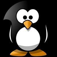 Penguin Productions