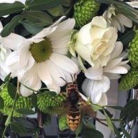 Ziedu salons Orkide
