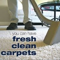Specialty Carpet Cleaning Services