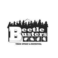 Beetle Busters LLC