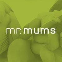 Mr Mums