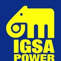 Plantas Eléctricas IGSA POWER