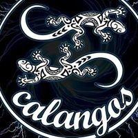 Boate Calangos