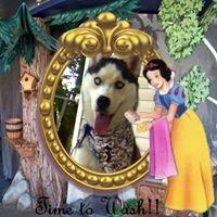 Snow White's Pet Grooming