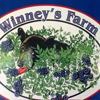 Winney's Blueberry Farm