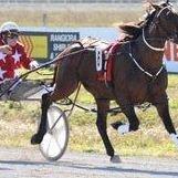Rangiora Racecourse