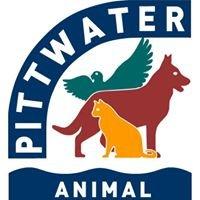 Pittwater Animal Hospital