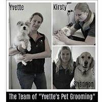 Yvette's Grooming Northern Beaches