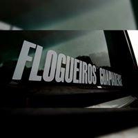 FLOGUEIROS GUAPIARENSE