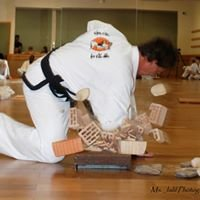 Traditional Taekwondo Center of South Tampa