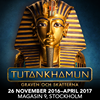 Tutankhamun - Graven och skatterna