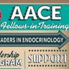 AACE Fellows