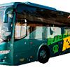 Rieder Busreisen