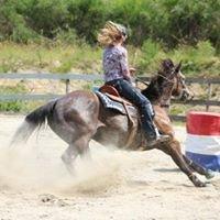 Sunshine Coast Equestrian Club