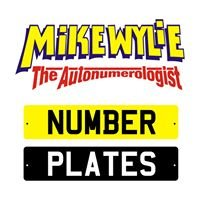 Mike Wylie The Autonumerologist