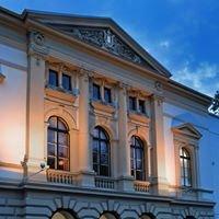 Eduard von Winterstein Theater