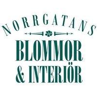Norrgatans Blommor & Interiör