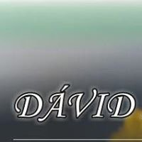 Dávid Méhészeti eszköz- és gépgyártás