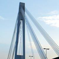 The Bridge Consulting & Training