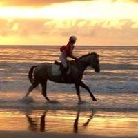 Port Douglas Beach Picnic Races