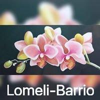 Lomeli-Barrio