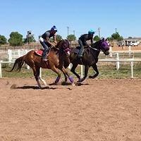 Sonoita Horse Races