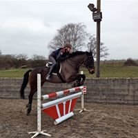 Equestrian jump pole sleeves & fillers