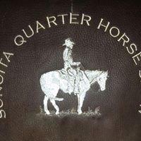Sonoita Quarter Horse Show