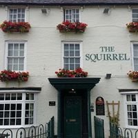 The Squirrel Alveley