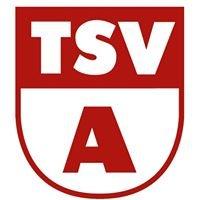 TSV Altheim/Alb Fußball