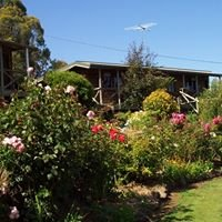 Mole Creek Cabins